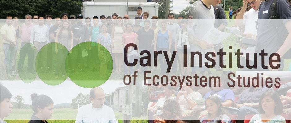 visit cary institute of ecosystem studies gallery